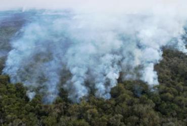 Senado aprova aviação agrícola no combate a incêndio florestal; texto vai à Câmara   Rogério Florentino   AFP