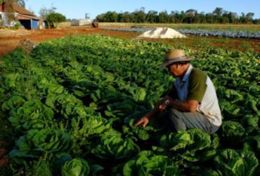 Nova norma visa estímulo ao campo | Antonio Costa | Fotos Públicas | 28.8.2014