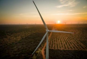 Empresa de energia anuncia investimentos na Bahia | Foto: Divulgação | Voltalia