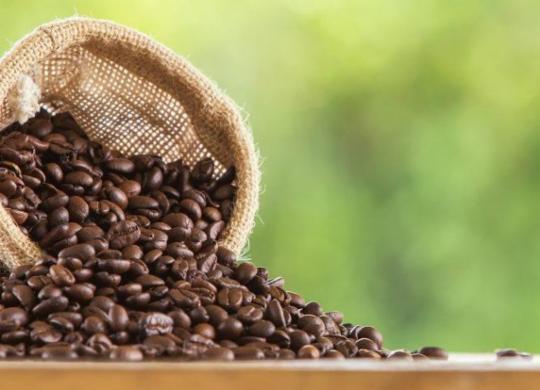 Com cooperativismo, o café pode crescer na Bahia | Divulgação | Freepik