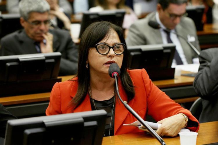 Alice Portugal frisa que estratégia tem uma vigência para além do mandato do presidente Jair Bolsonaro | Foto: Agência Câmara
