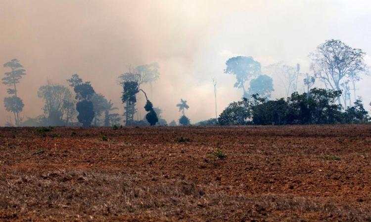 Queimadas ocorrem com mais frequência em setembro | Foto: João Laet | AFP - Foto: João Laet | AFP
