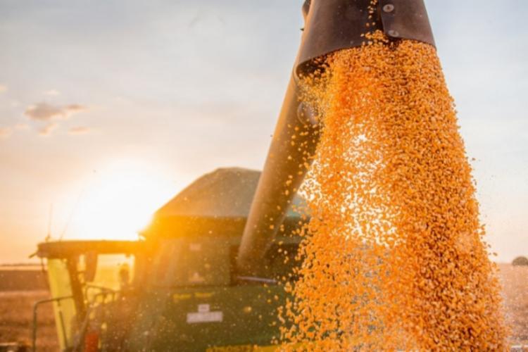 Esse é o nono Levantamento Sistemático da Produção Agrícola (LSPA) | Foto: Divulgação | GOVBA - Foto: Foto: Divulgação | GOVBA