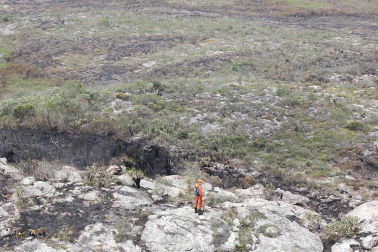 O combate aos incêndios foi iniciado pelas equipes no último dia 6 de outubro   Foto: Divulgação   Corpo de Bombeiros - Foto: Divulgação   Corpo de Bombeiros