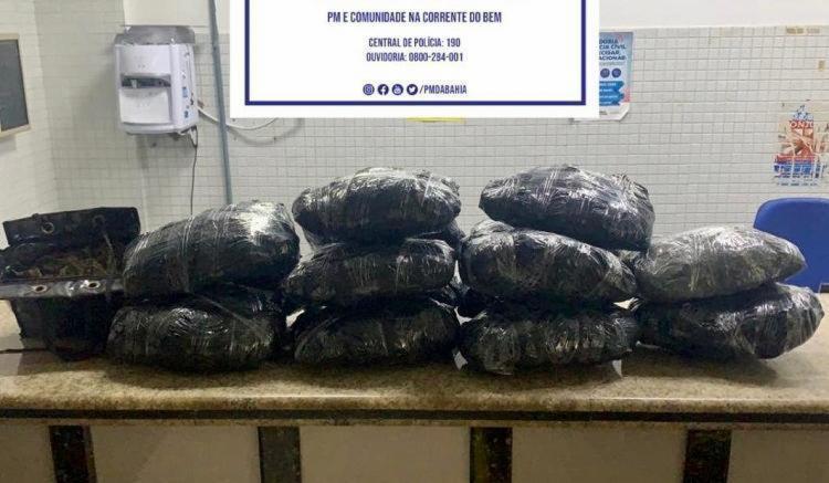 Jovem de 25 anos escondia maior parte da droga (28kg) na casa da namorada   Foto: Divulgação   SSP-BA - Foto: Divulgação   SSP-BA