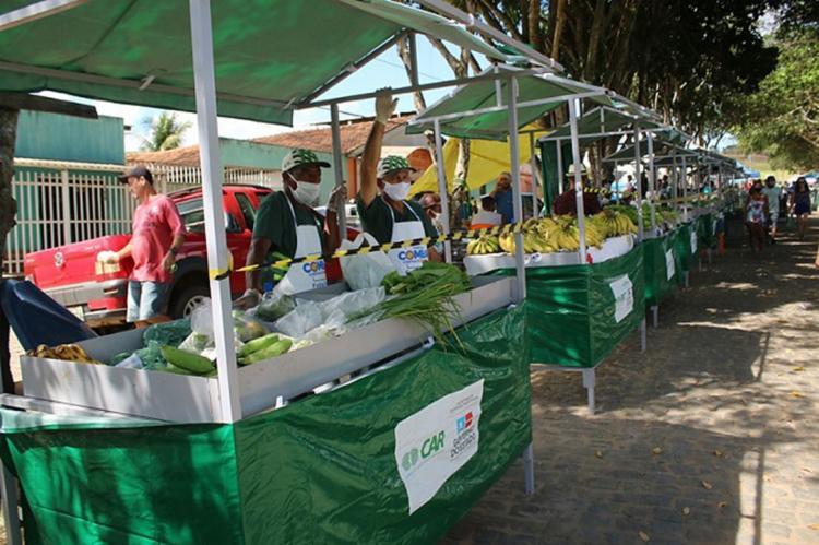 Os projetos são de responsabilidade da Secretaria de Desenvolvimento Rural (SDR) e Federação da Agricultura e Pecuária do Estado da Bahia (Faeb)   Foto: Sistema Faeb   Senar - Foto: Sistema Faeb   Senar