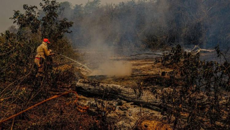 O governo do estado informou que 47 combatentes atuarão contra as chamas | Foto: Divulgação | Secom-MT - Foto: Divulgação | Secom-MT