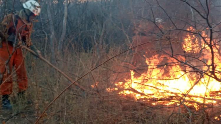 Bombeiros atuam para controlar e extinguir os focos de incêndio   Foto: Divulgação   CBMBA - Foto: Divulgação   CBMBA