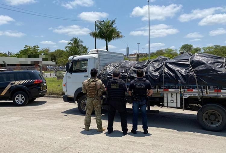 Já foram destruídas mais de 15 toneladas de cocaína somente este ano | Foto: Divulgação | Polícia Federal - Foto: Divulgação | Polícia Federal