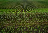 Feira une tecnologia a negócios agrícolas | Foto: Divulgação | Freepik