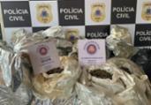 Suspeito é preso com 420 kg de maconha em Jauá | Divulgação | Polícia Civil