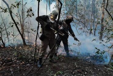 Marinho defende medidas preventivas para evitar incêndios no Pantanal  