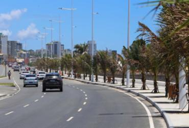 Universidade dos EUA coordena pesquisa sobre trânsito de Salvador | Divulgação