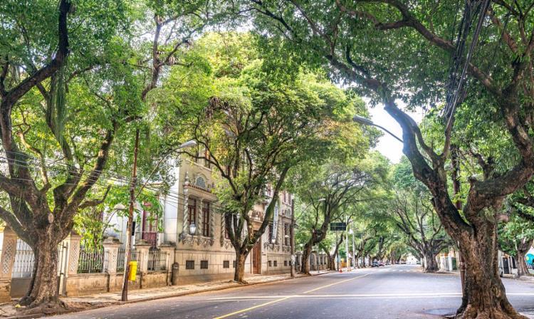 Imagens do Corredor da Vitória - Foto: Eduardo Moody / Divulgação