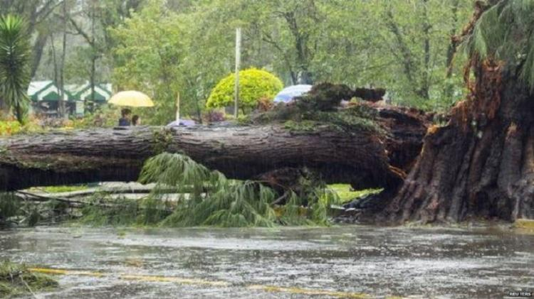 Mais de 300 casas foram soterradas por rochas e lama do Vulcão Mayon - Foto: Reprodução: Twitter