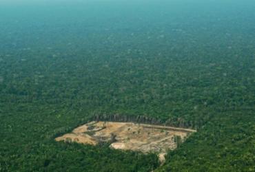 Alertas de desmatamento na Amazônia batem recorde em março |