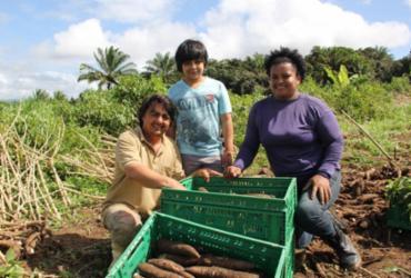 Fundação Odebrecht disponibiliza publicação sobre programa social no Baixo Sul