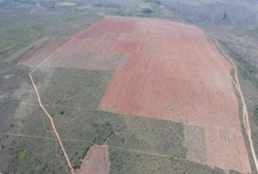 MP ajuíza ação contra desmatamento ilegal em fazenda de Piatã | Divulgação | MPBA