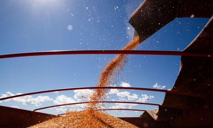 Complexo de soja (grão, óleo e farelo) foi o principal produto de exportação | Foto: CNA | Wenderson Araujo | Trilux - Foto: CNA | Wenderson Araujo | Trilux