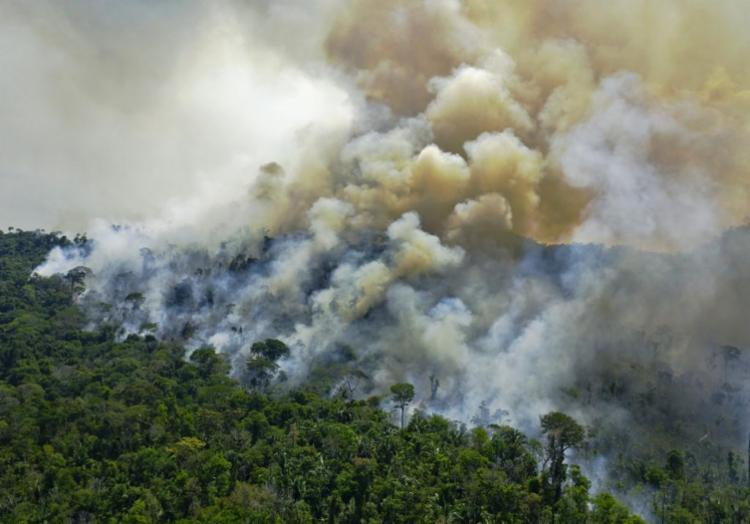 Brasil concentra mais de 60% da floresta amazônica | Foto: Carl de Souza | AFP - Foto: Carl de Souza | AFP