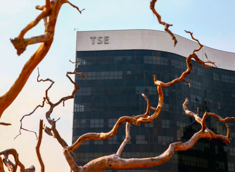 Resolução do TSE estabeleceu um planejamento específico para a entrega de documentos - Foto: Marcelo Camargo | Agência Brasil