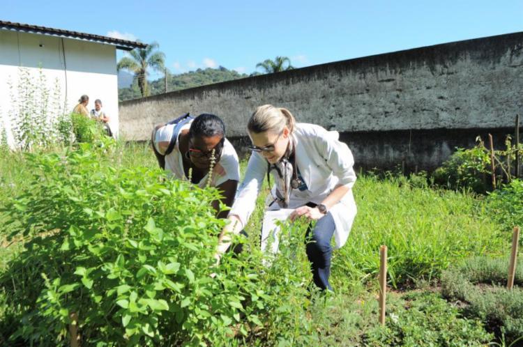 A estruturação do projeto contará com as parcerias da Secretaria Municipal da Saúde e da Faculdade de Farmácia da UFBA   Foto: Divulgação   Fiocruz - Foto: Divulgação   Fiocruz