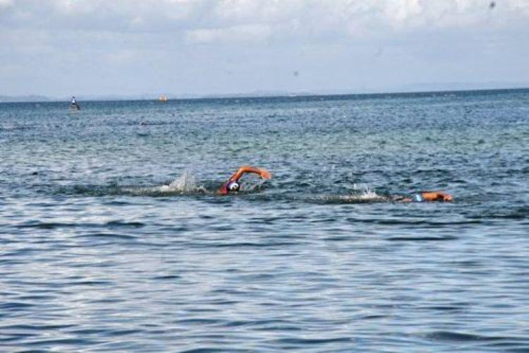 A prova tem saída da Praia de Gameleira, em Vera Cruz, às 7h30, e a chegada no Yacht Clube da Bahia I Foto: Divulgação - Foto: Divulgação