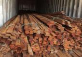 Operação da PF combate desmatamento ilegal na Floresta Amazônica | Foto: Polícia Federal