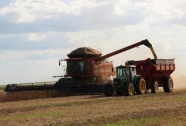 Bahia tem safra recorde 10 milhões de toneladas de grãos em 2020 | Divulgação | Aiba