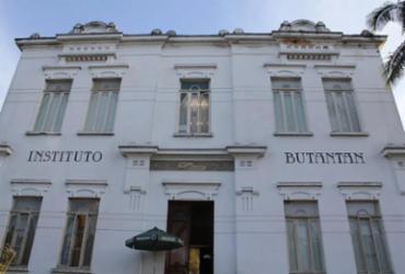 Instituto Butantan produzirá vacina contra chikungunya | Divulgação | Instituto Butantan