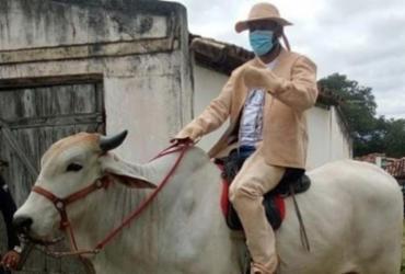 Prefeito de Jacobina toma posse montado em boi e vestido com gibão de couro