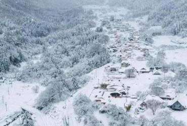 Acidente envolvendo mais de 130 veículos deixa morto e feridos no Japão | Reprodução | Redes Sociais