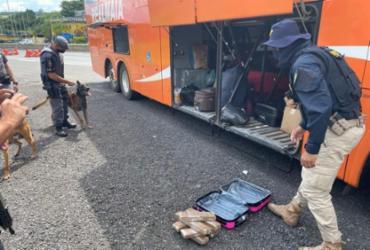 Mulher transportando maconha para a Bahia é presa em flagrante | Divulgação | PRF