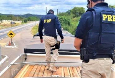 PRF apreende carga de madeira transportada ilegalmente em Senhor do Bonfim