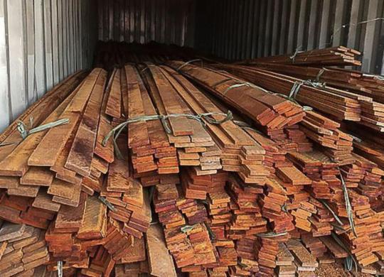 Operação da PF combate desmatamento ilegal na Floresta Amazônica | Polícia Federal
