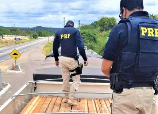 Carga de madeira transportada ilegalmente é apreendida em Senhor do Bonfim | Divulgação | PRF