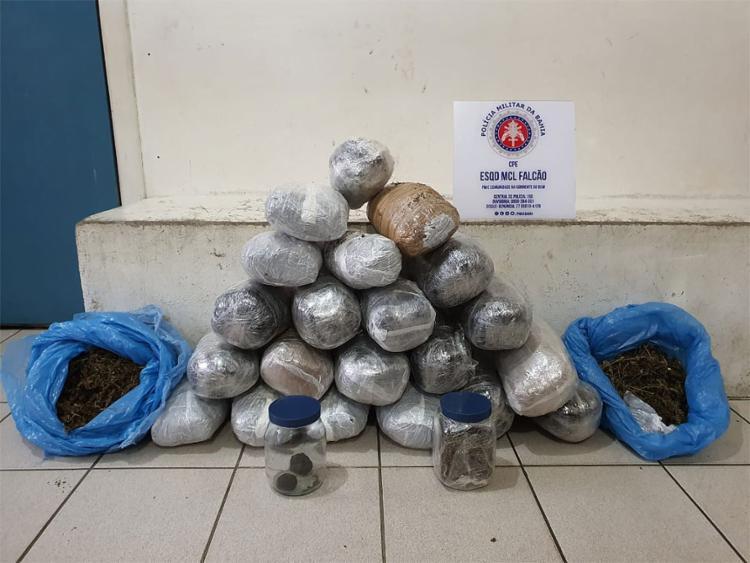 No total, foram localizados 23 kg de maconha   Foto: Divulgação   SSP-BA - Foto: Divulgação   SSP-BA