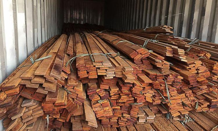 Valor das toras extraídas ilegalmente totaliza mais de R$ 80 milhões I Foto: Polícia Federal - Foto: Polícia Federal