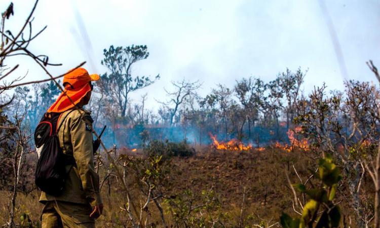 No cômputo geral, 2020 foi recordista na década mais recente de queimadas, de acordo com dados do Instituto de Pesquisas Espaciais | Foto: Divulgação | GCOM - Foto: Divulgação | GCOM