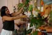 Dinâmicas do mercado de plantas e flores durante a pandemia | Foto: Rafael Martins | Ag. A TARDE