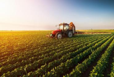 Famílias agrícolas são bem vistas pela população do Brasil | Divulgação|