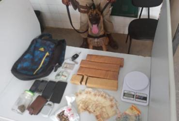 Dupla é presa após cadela policial encontrar droga dentro de carro na Bahia