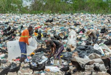 Lixões seguem contaminando o extremo sul da Bahia | Adelmo Borges | Divulgação