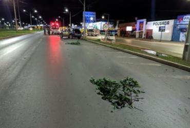 Motociclista morre após bater em caminhão parado na BR-242