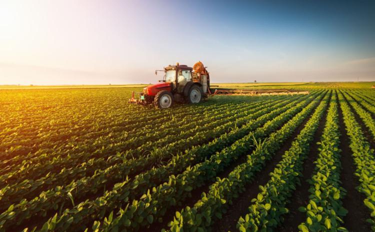 """Uma coisa é agricultura, agricultores e alimentos. A outra coisa é """"agronegócio"""