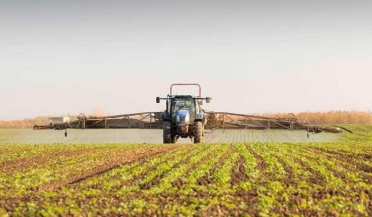 Caixa vai disponibilizar R$ 12 bilhões para os agricultores com novas linhas de crédito I Foto: Reprodução - Foto: Reprodução