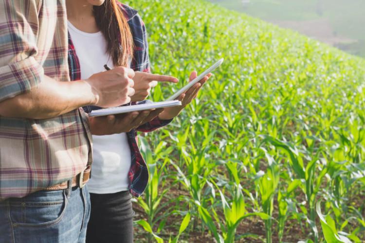 Agronegócio já está inserido nessa nova lei do mercado. Foto - Divulgação| - Foto: Foto - Divulgação|