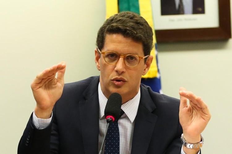 Saraiva está em atrito com o ministro Ricardo Salles (Meio Ambiente) por causa da maior apreensão de madeira do Brasil. Foto: Agência Brasil - Foto: Agência Brasil