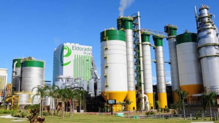 Paper Excellence atua na fabricaçãode celulose de pasta de alto rendimento e também de papel | Foto: Divulgação - Foto: Divulgação