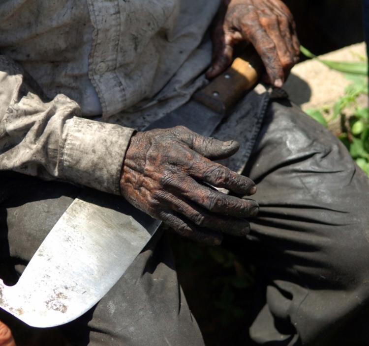 Em 2020 foram 942 trabalhadores libertados, ante 1.051 em 2019 | Foto: Arquivo | Agência Brasil - Foto: Arquivo | Agência Brasil